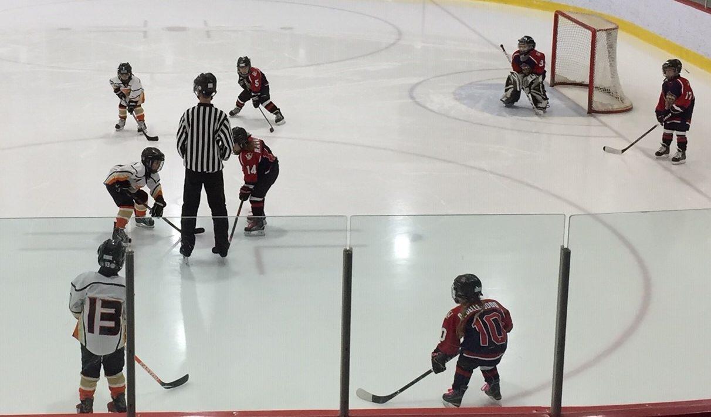 https://www.hockeywestisland.org/wp-content/uploads/2019/01/novice-B-kings-e1546871156169.jpg