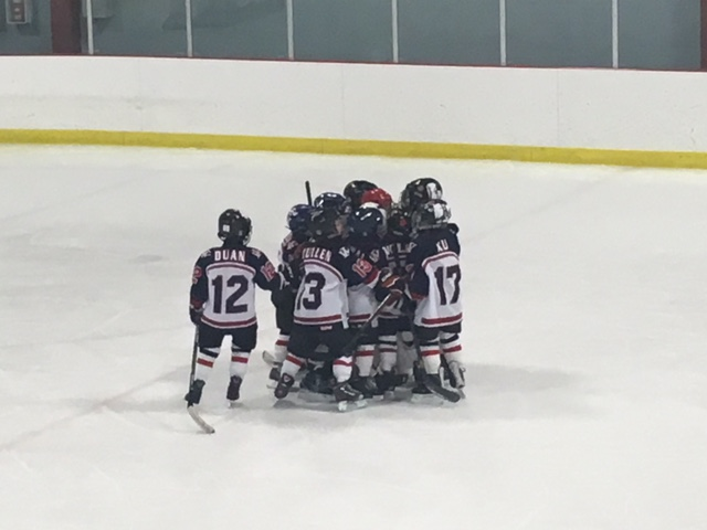 https://www.hockeywestisland.org/wp-content/uploads/2019/01/novice-b-knights.jpg